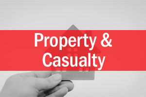 Property-and-Casualty