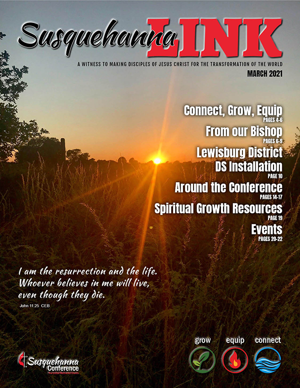 Mar LINK 2021_cover